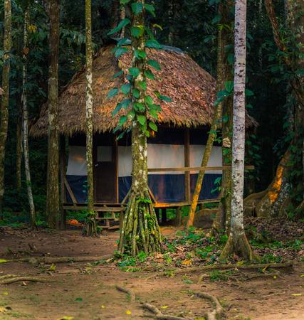 Manu National Park, Peru - August 08, 2017: Lodges of Cocha Otorongo in the Amazon rainforest of Manu National Park, Peru