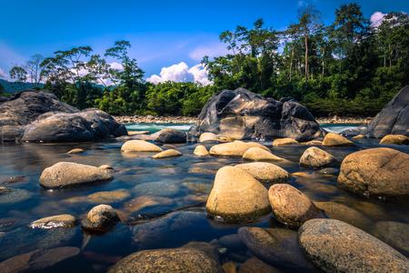 Manu National Park, Peru - August 11, 2017: Landscape of the Amazon rainforest of Manu National Park, Peru Editorial