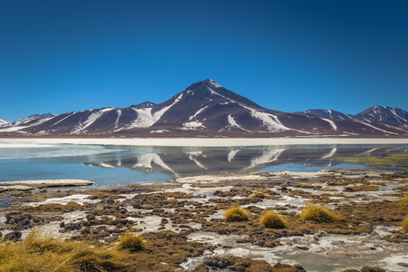 Landscape of the Green Lagoon in Eduardo Avaroa National Park, Bolivia
