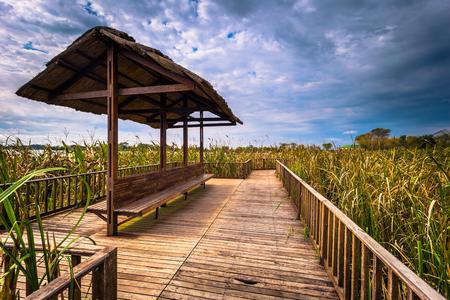 Colonia Carlos Pellegrini - June 28, 2017: Landscape of the Provincial Ibera park at Colonia Carlos Pellegrini, Argentina
