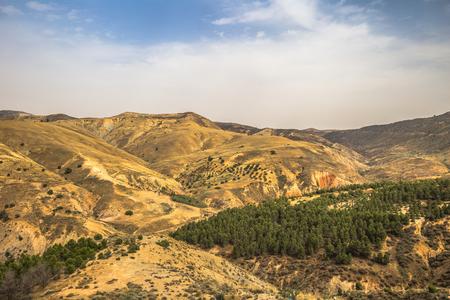 Wild landscape of the countryside of Algeria Фото со стока