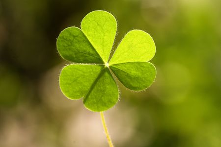 three leafed: Clover leaf