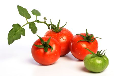 Fresh tomatoes on white Фото со стока