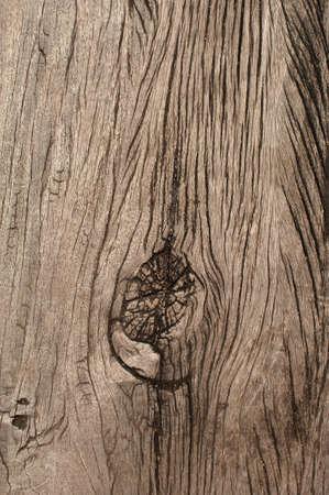 wart: Close up wooden plank texture