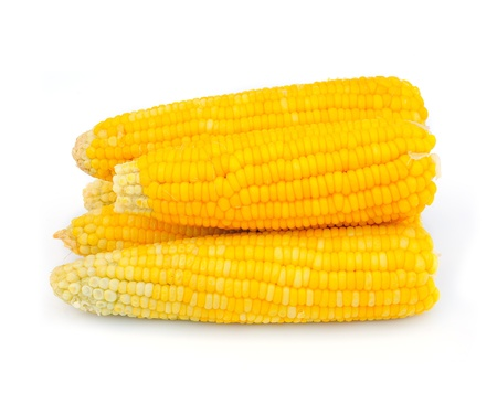 cooked sweet corn  photo
