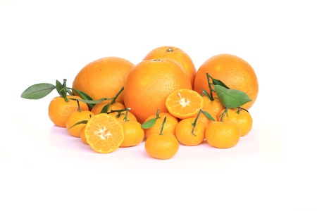 pert: Oranges on a white background.