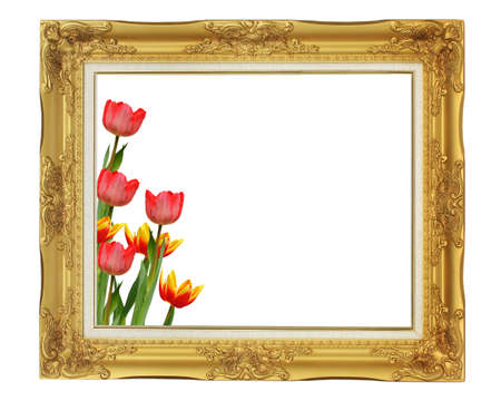 Beautiful tulips in vintage frame photo