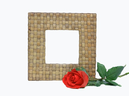 Nature .frame with red rose on white background. photo