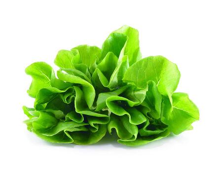 cos: Baby Cos lettuce.