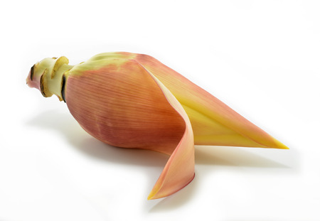 Banana flower isolated on white background. photo