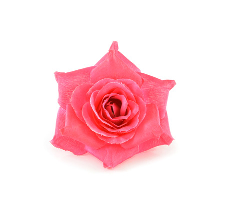 Rose, artificial flowers isolated on white  photo