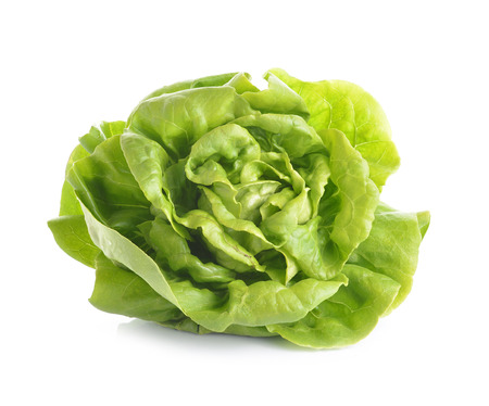 fresh butter head lettuce isolated on white background