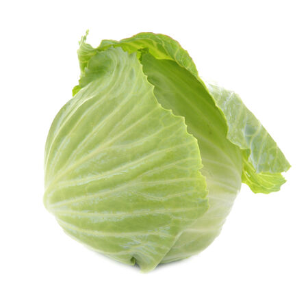cabbage isolated on white background photo
