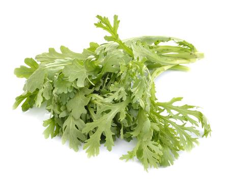 rocket lettuce: Fresh rucola salad or rocket lettuce leaves isolated on white  Stock Photo