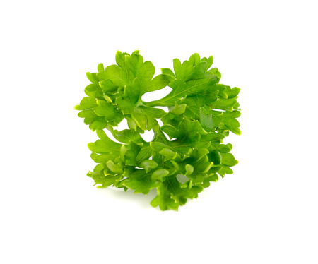 parsley isolated on white background Reklamní fotografie
