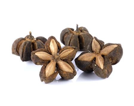 volubilis: sacha inchi peanut seed on white background Stock Photo