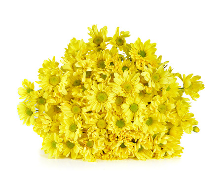 fragility: Beautiful bouquet of yellow chrysanthemum Stock Photo
