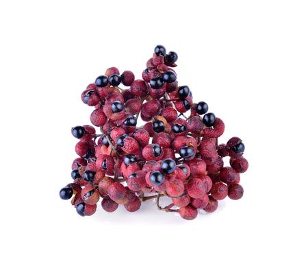 Zanthoxylum acanthopodium DC., fruits.