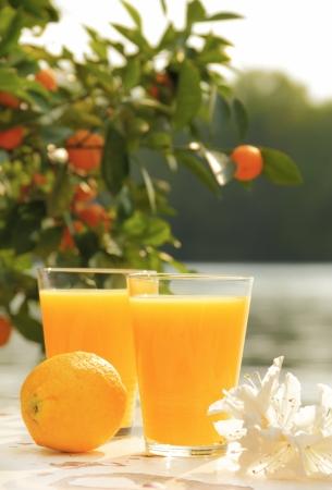 jus orange glazen: twee glazen van sinaasappelsap en citroen op oude witte tafel in de buurt van zee Stockfoto