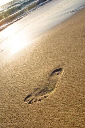 Man foot print on a white sand beach near ocean photo