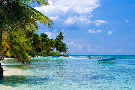 Green palmen op een wit zand strand met blauwe hemel