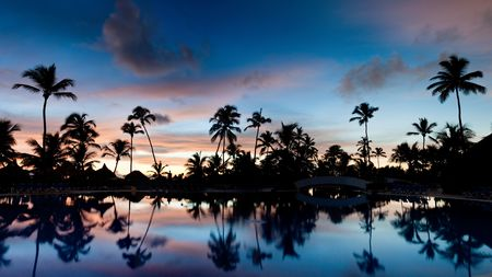 Panorama of a palm beach under sunset sky in summer