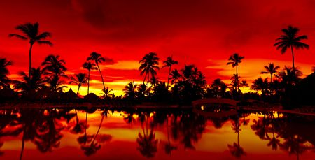 Panorama Orange and red sunset over sea beach with palms Dominican republic