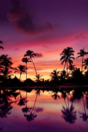 beach sunrise: Blue pink and red sunset over sea beach with palms Dominican republic Stock Photo