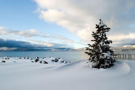ツリー雪タホ湖、カリフォルニア