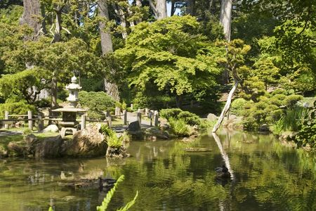 The Japanese Tea Garden in Golden Gate Park is the type of Japanese garden known as a wet walking garden, although it has a Zen garden, or dry garden area as well. Golden Gate Park's Japanese Tea Garden is the oldest public Japanese garden in the United S Stock Photo - 959843