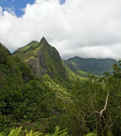 view of Eastern Oahu as seen from the Pali lookout