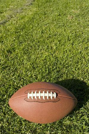 Foot Ball over grass 版權商用圖片