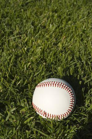 Base Ball Close up on grass Stock Photo - 2136874