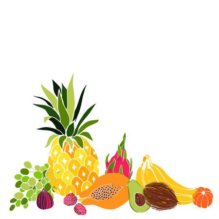 Fruits.  Vector illustration.