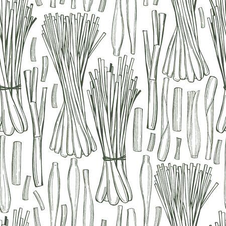Hand drawn  lemongrass.   Vector  seamless pattern.