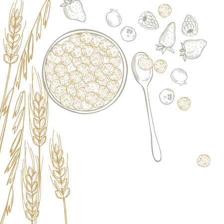 Hand drawn breakfast cereals. Vector  background. Sketch illustration