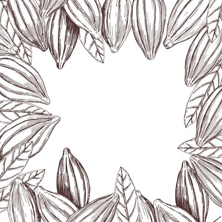 Vector background with hand drawn cocoa beans. Sketch illustration
