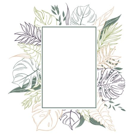 Vector frame with hand drawn tropical plants. Palm and monstera leaves.