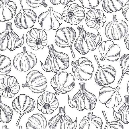 Hand drawn garlic on white background. Vector seamless pattern
