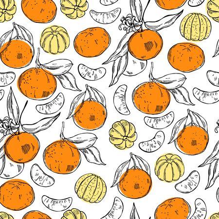 Hand drawn tangerines on white background. Vector seamless pattern Ilustração
