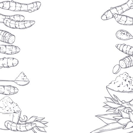 Hand drawn spiceTurmeric. Vector background.