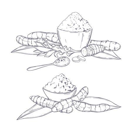 Hand drawn spiceTurmeric. Vector sketch illustration Illusztráció