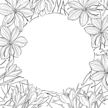 Vector background with saffron spice. Hand drawn sketch illustration Ilustrace