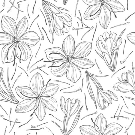 Vector seamless pattern with hand drawn saffron spice.
