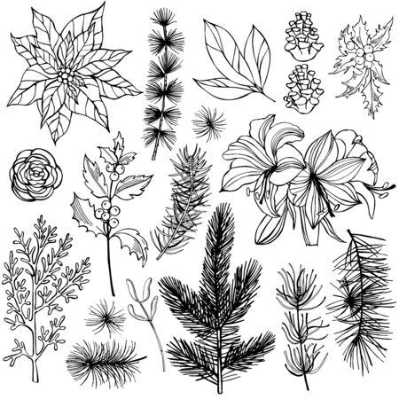 Christmas plants set. Vector hand-drawn illustration. Vettoriali