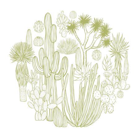 Desert plants, cacti in a circle. Vector sketch  illustration.