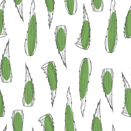 Hand drawn aloe vera plant. Vector  seamless pattern
