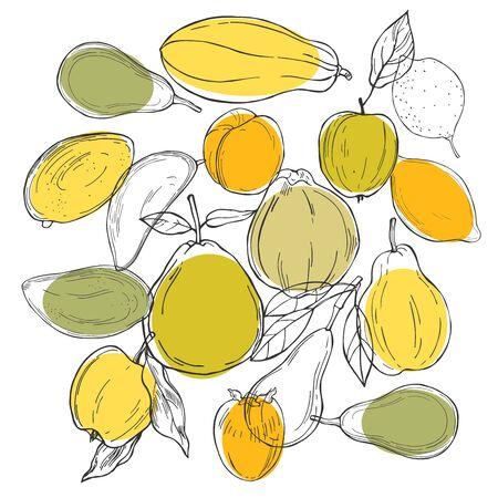 Hand drawn fruits on white background. Vector sketch illustration. Vetores