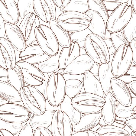Hand drawn nuts. Pistachio. Vector seamless pattern