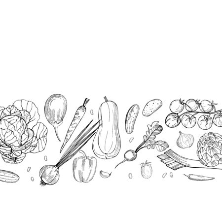 Vector background with hand drawn vegetables. Sketch illustration.